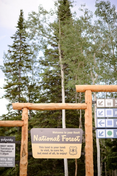 Routt County National Forest Sign