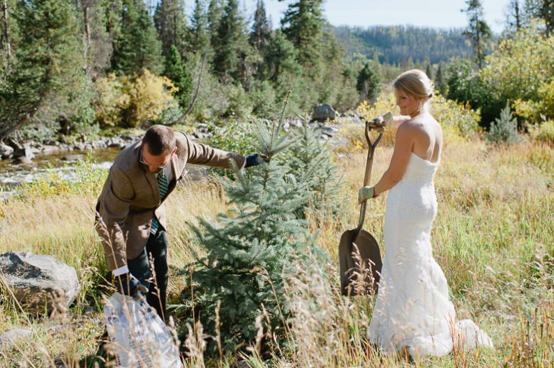 Tree planting at wedding ceremony