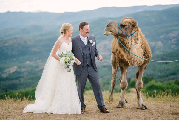 Camel with bride and groom at wedding