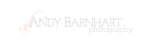 Steamboat Springs Wedding Photographer | Andy Barnhart Photography logo